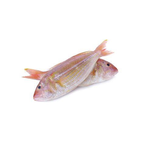 Kerisi Fish