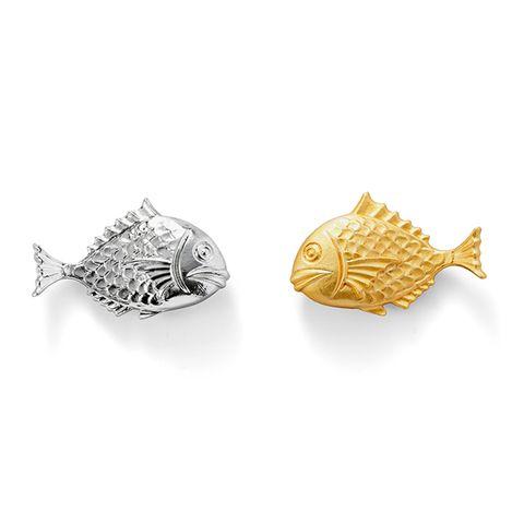 鯛魚1.jpg