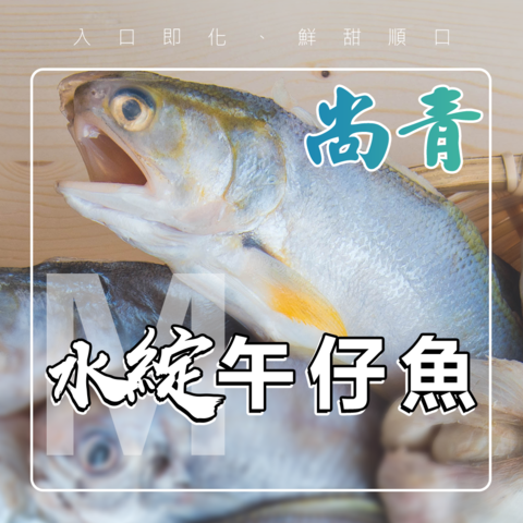 M魚2.png