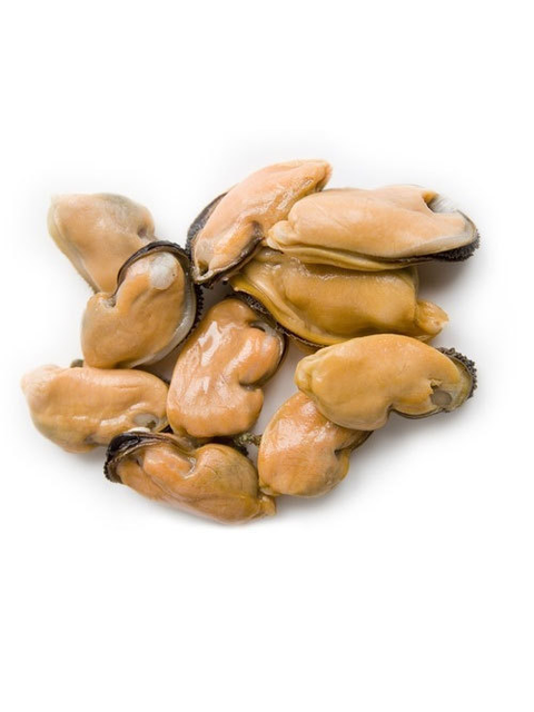 mussel meat.png