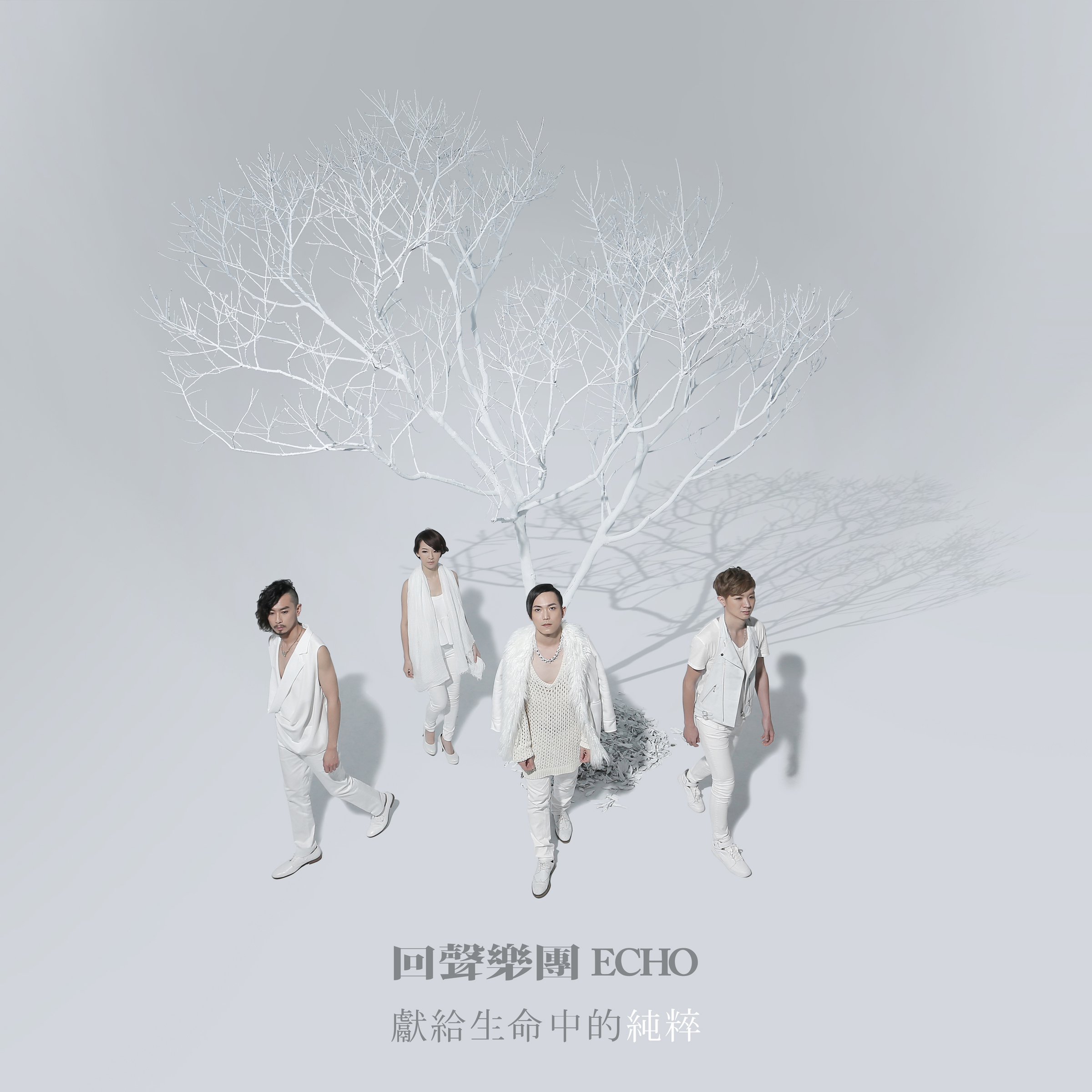 echo_itunes_cover_4000.jpg