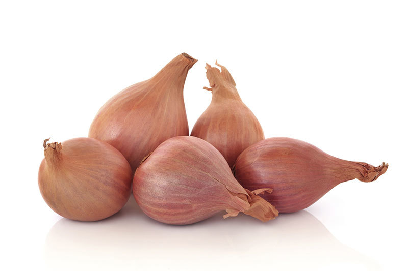commodity-shallot.jpg