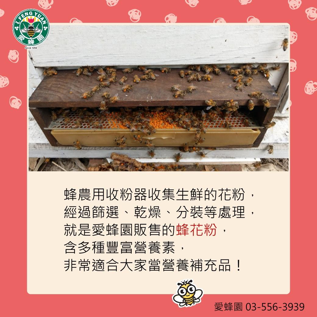 QA-花粉-06-2.jpg