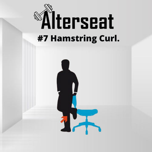 alterseat-exercise-7-png.png