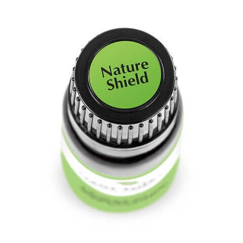 Synergy - Cap Stickers - Nature Shield_LR_2_480x480.jpg