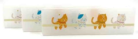 pencil box - plastic.jpg