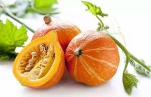 China Pumpkin Extract/Pumpkin Seed Extract Powder 4: 1 for Food Supplement  - China Pumpkin Seed, Cushaw Seed Extract