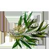 Ingredients-Tea-Tree-Oil.png
