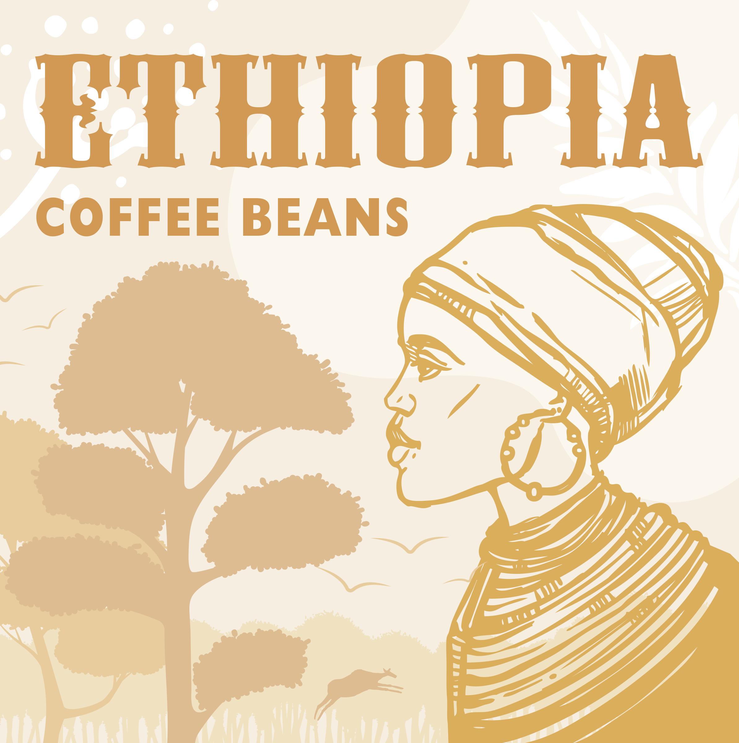 衣索比亞-淺焙.jpg