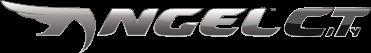 Pirelli ANGEL™ CITY motorbike tyre