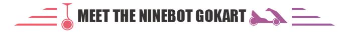 ninebot segway go kart malaysia