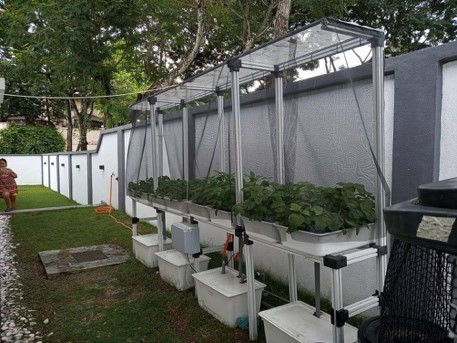Aquaponic Growbed Module at Subang 2