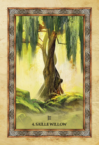 凱爾特樹神諭卡:Celtic Tree Oracle3.jpg