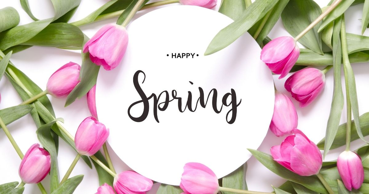 Why We Love Spring!