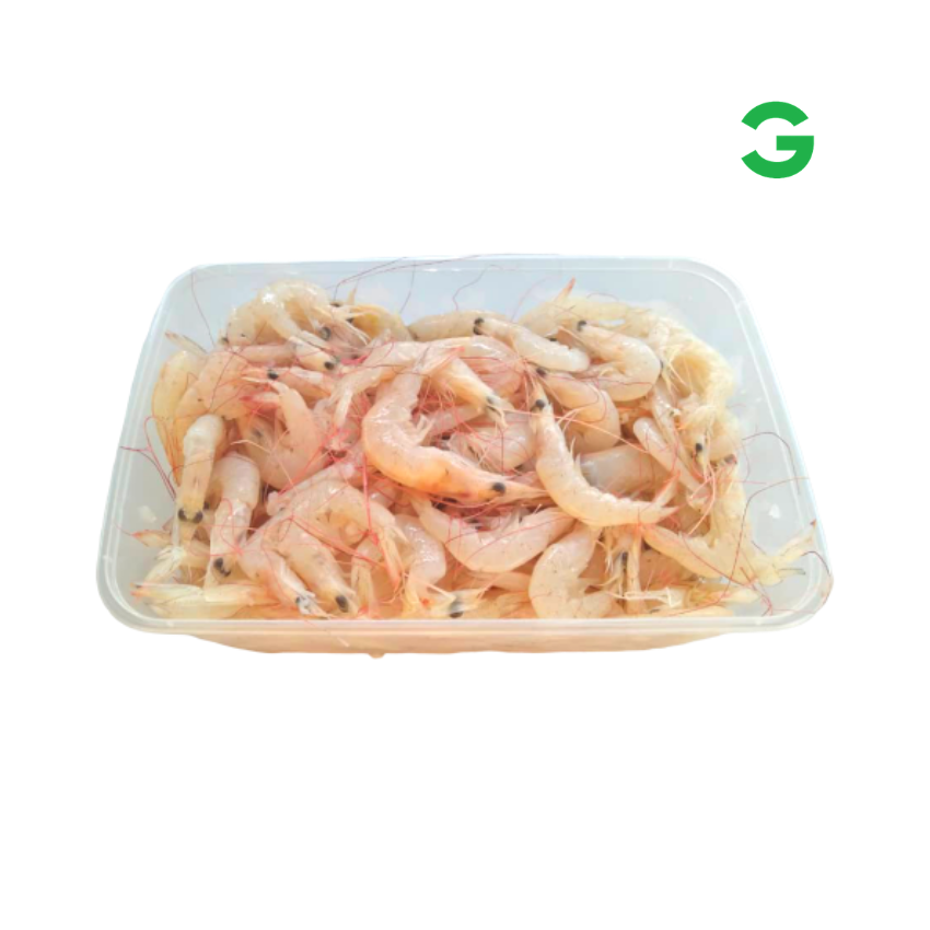 Udang Gred D.png