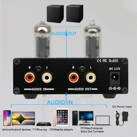 Fosi Audio P1 Pre-amp Inputs & Outputs Malaysia.jpg
