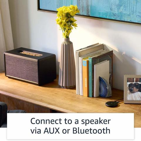 Turn Any Speakers into Alexa Smart Speaker in Malaysia.jpg