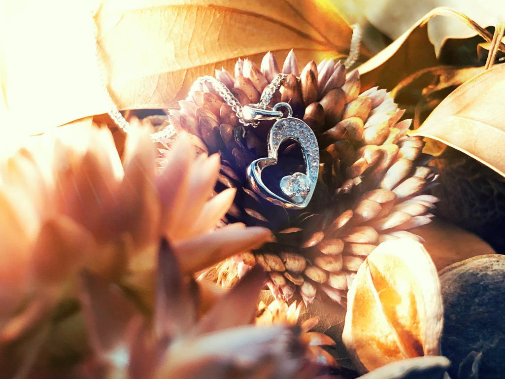 Fantasy Nature  凡蒂絲 內翠兒 - FN HD Pulcherrima 白鋯石-2.jpeg
