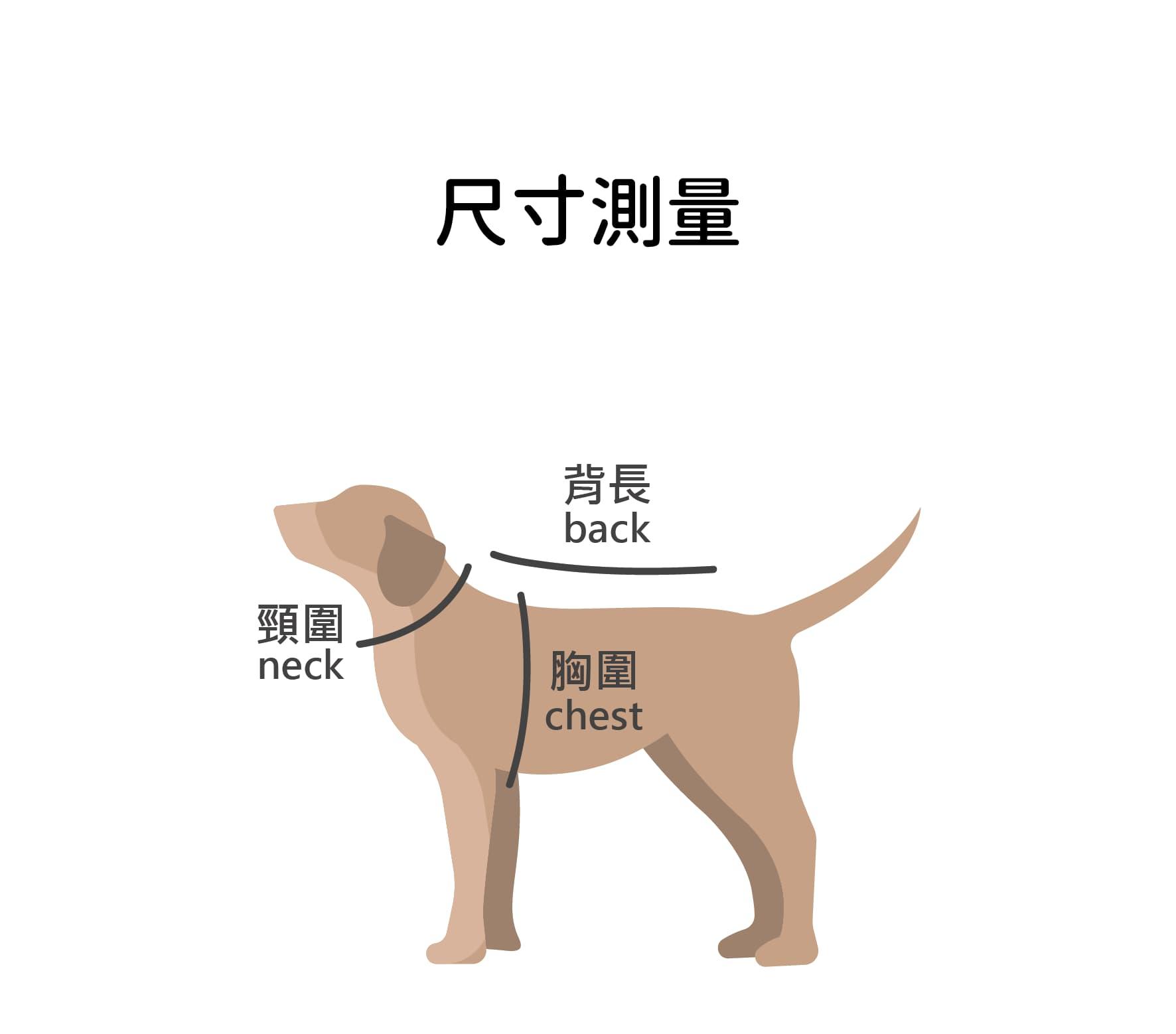 共用圖-12.jpg