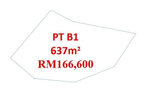 orna PTB1.jpg