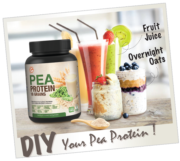 Pea-Protein-DIY-1.png