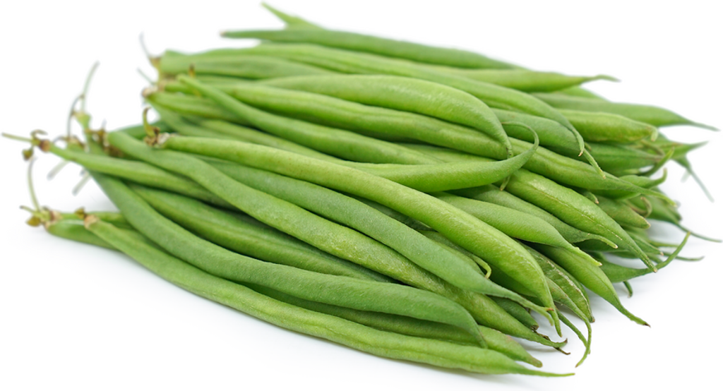 french bean.png