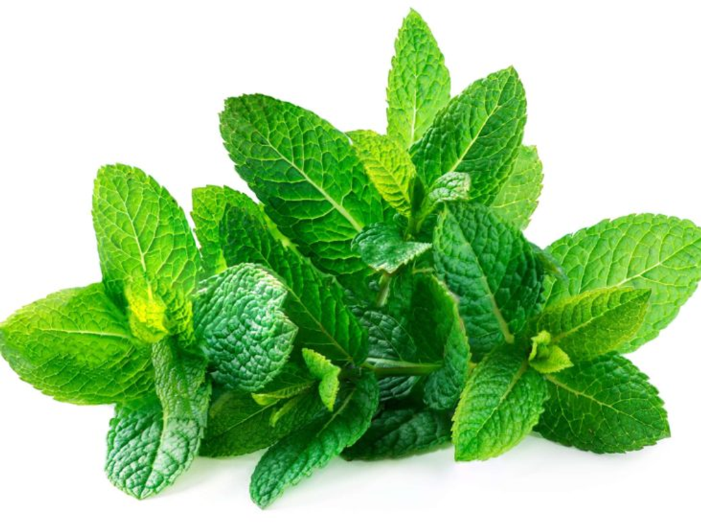 MINT LEAVES.png