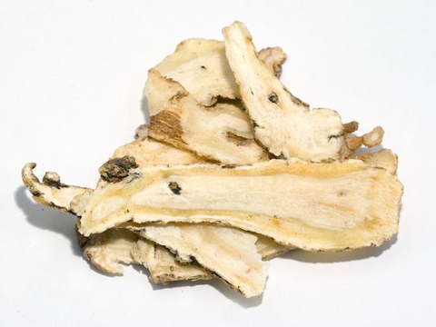 Chinese angelica.png