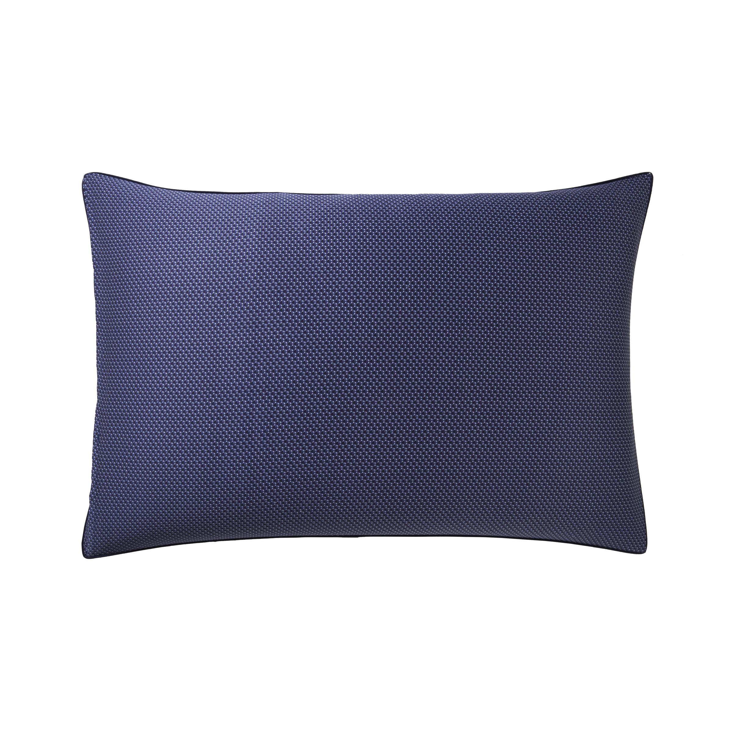 235239 - 2 - Pillow case ELEMENTS 50x75cm - Boss Home.jpg