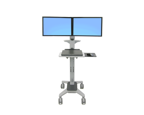 Ergotron NeoFlex Dual WideView WorkSpace_5.png