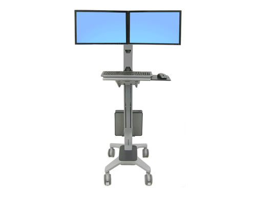 Ergotron NeoFlex Dual WideView WorkSpace_3.png