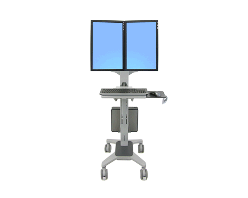 Ergotron NeoFlex Dual WideView WorkSpace_2.png