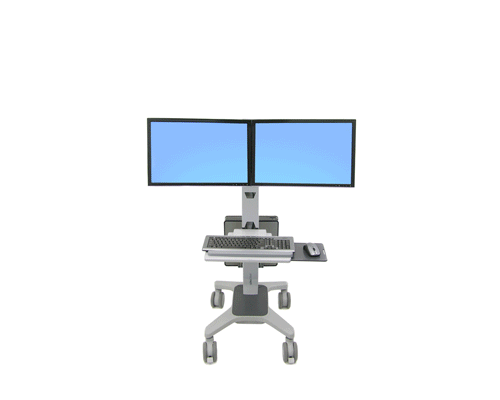 Ergotron NeoFlex Dual WideView WorkSpace_1.png