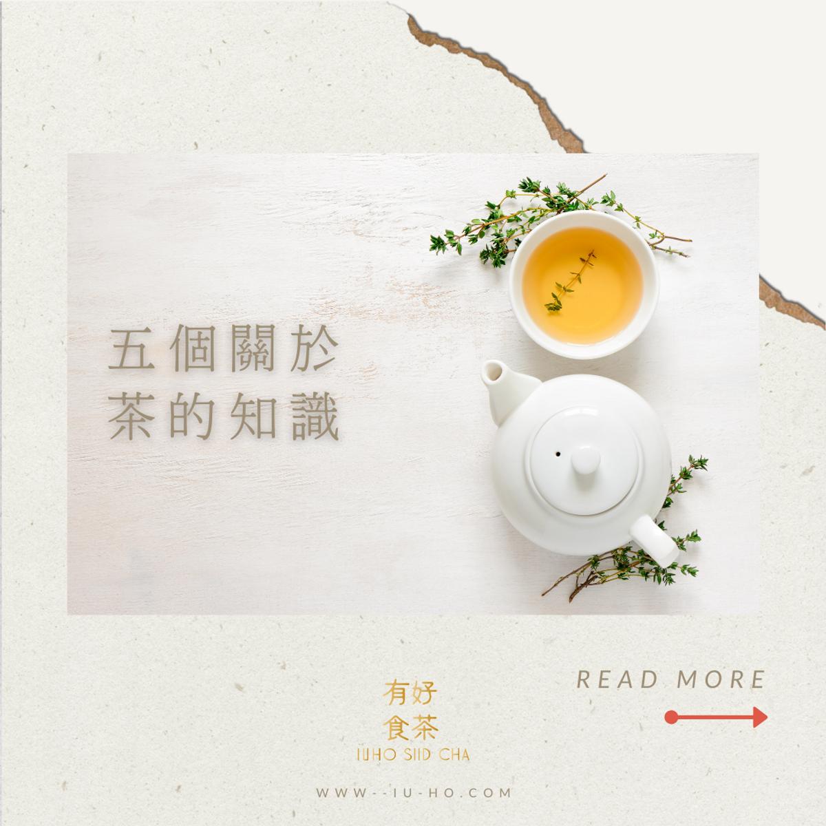 【五個關於茶的知識】