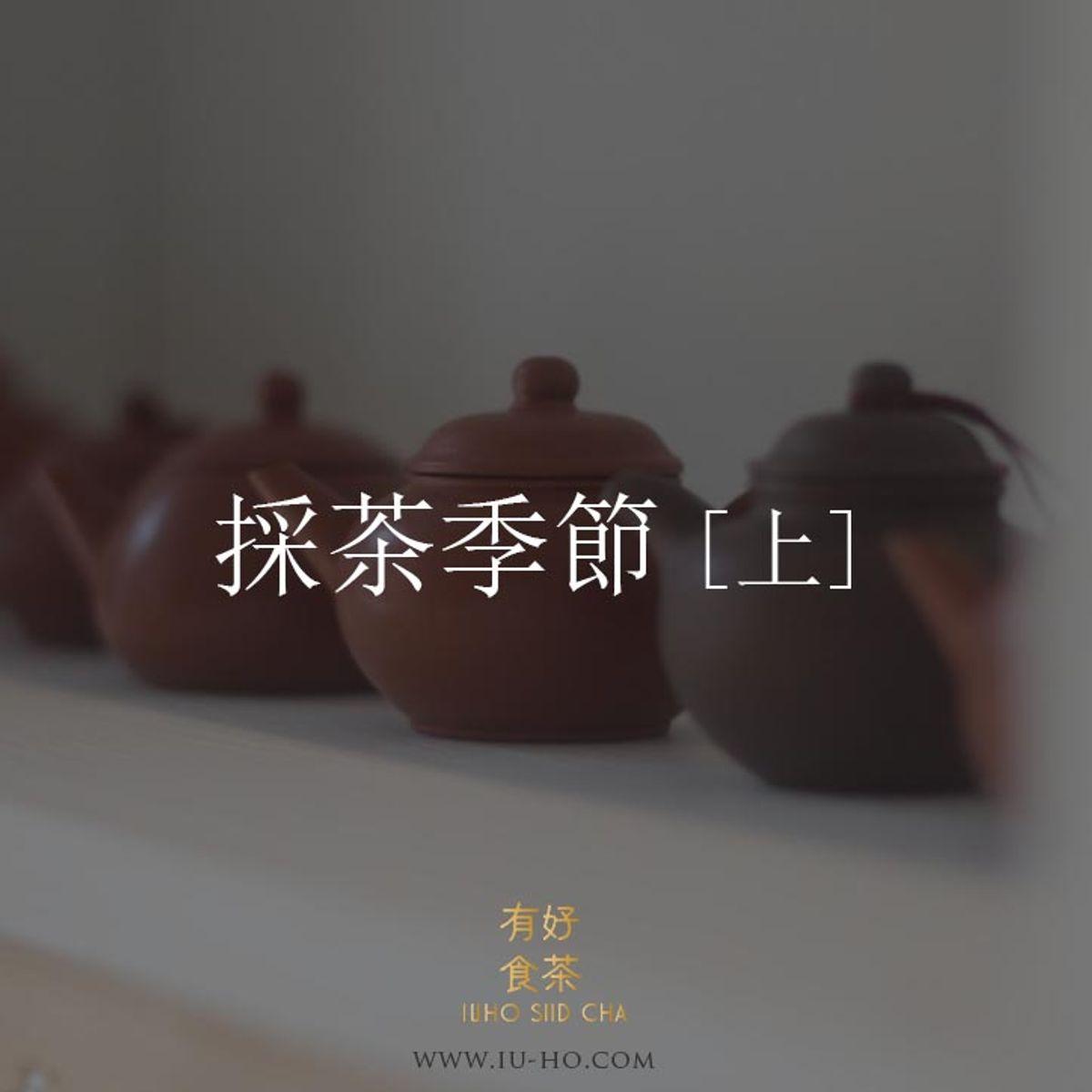 【茶知識】採茶季節  [上]