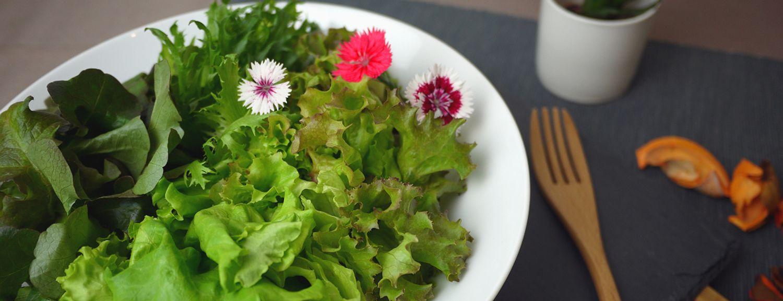 翠活安全蔬菜 - 安全蔬菜