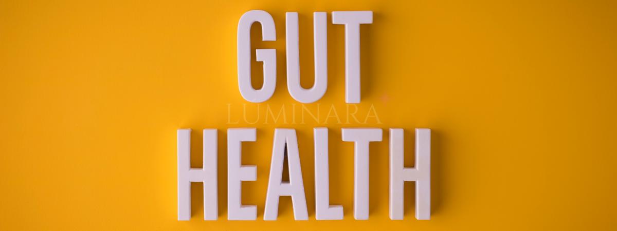 Benefits of Collagen for Gut Health