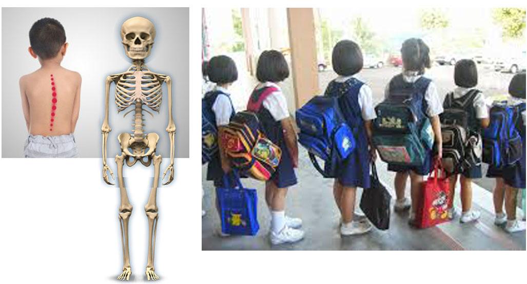 Tiger Family Malaysia - Ergonomic School Bag