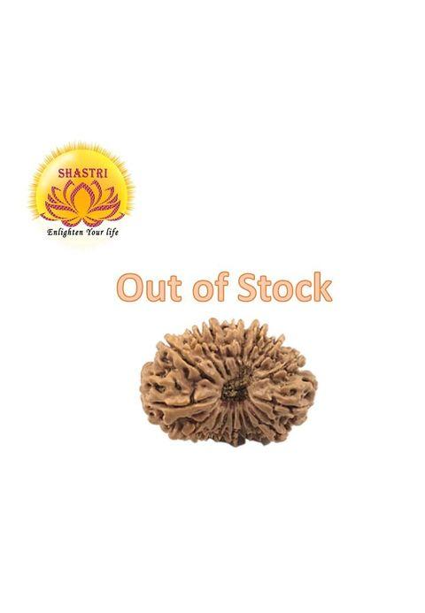rudraksha_21_out of stock.jpg