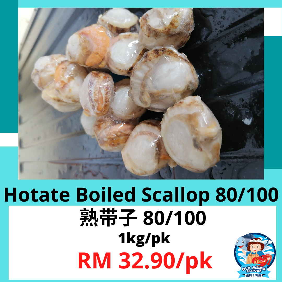 Boiled Hotate (4).png
