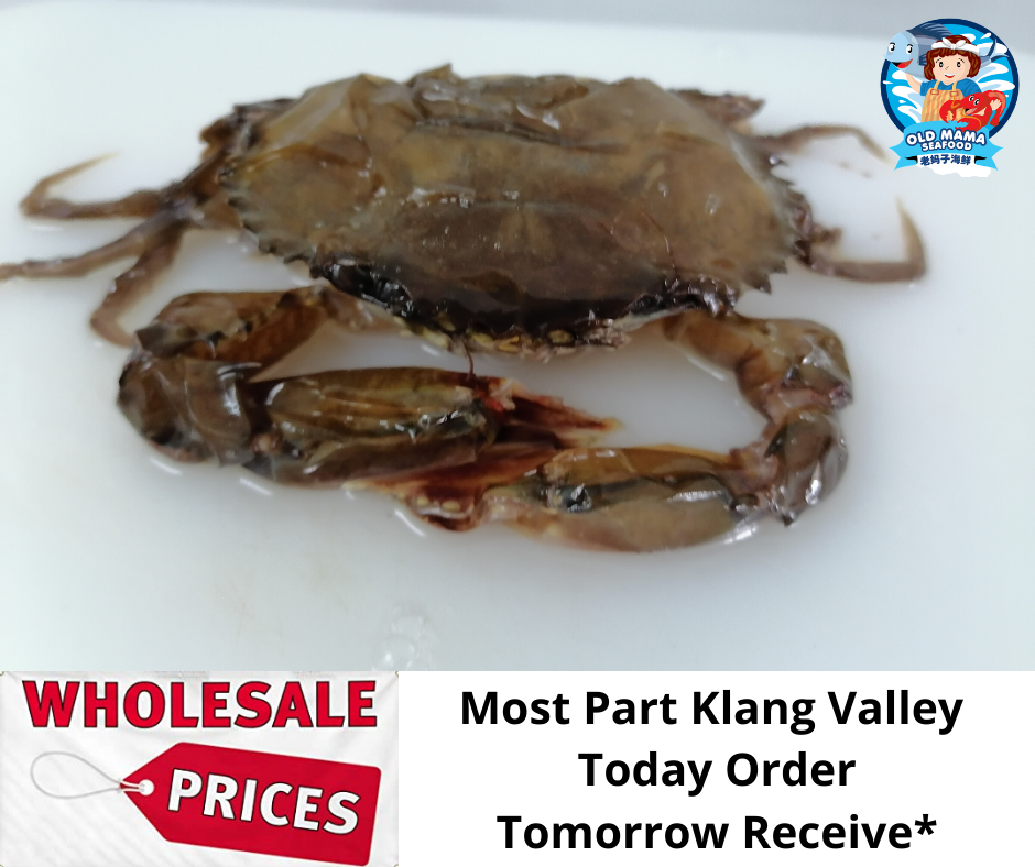 Soft Shell Crab (3).png