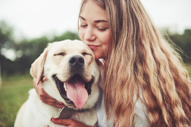 Actiwa Store | Featured Products - Pet Lovers