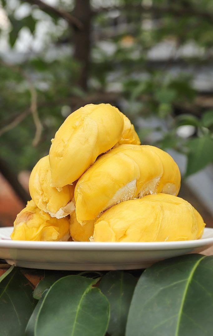 Dumpling Queens | 饺子皇后宝贝 Our Products - Premium Malaysia Durian 马来西亚高级榴莲