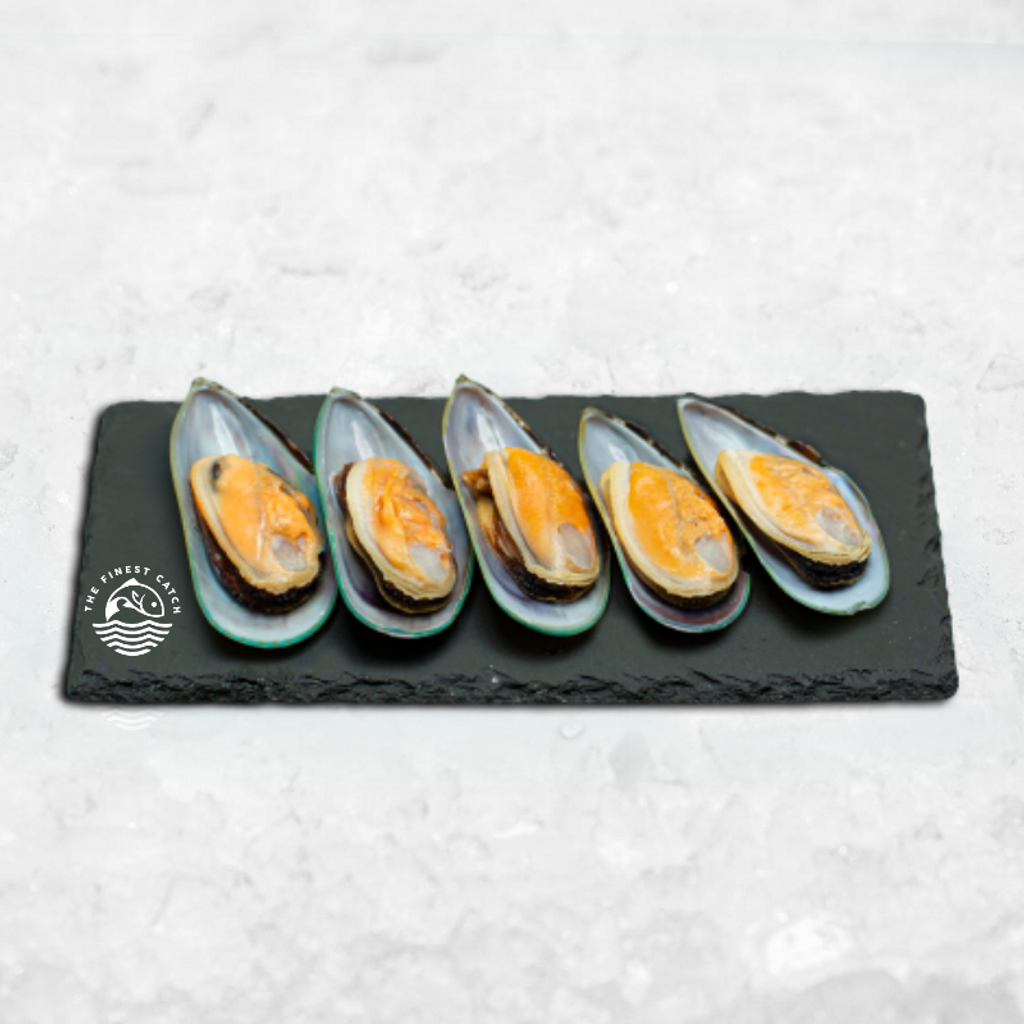 NS half shell mussel.png