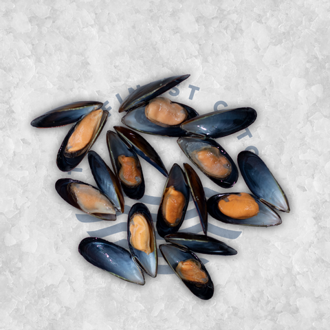 Chilean mussel.png