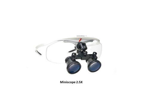 MiniScope 2.5.jpg