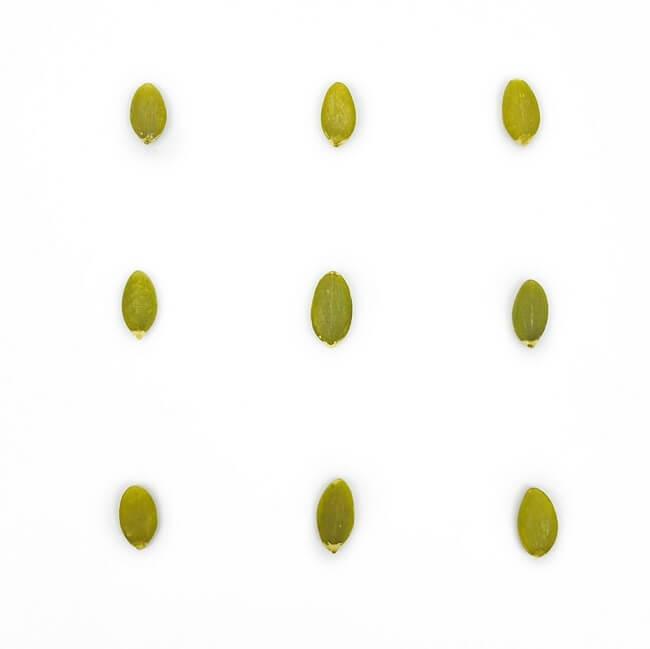 低溫烘焙原味南瓜子-2