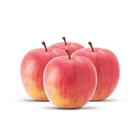 apple-500x500