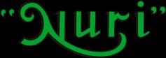 Galeria NURI