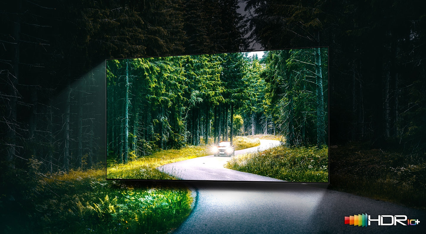 A car is running with lights on through the dense green forest on the TV screen. QLED TV shows accurate representation of bright and dark colours by catching small details.
